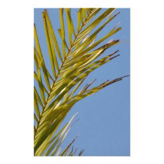 Palm Leaf Flyers