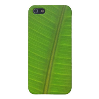 Palm Leaf iPhone 5/5s Case