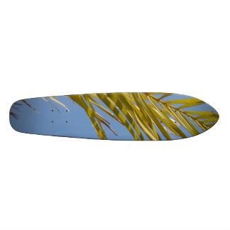 Palm Leaf Skateboard Decks