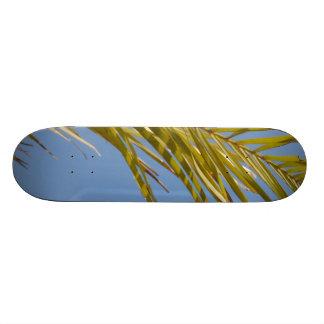 Palm Leaf Skate Board Deck