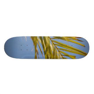 Palm Leaf Skateboards