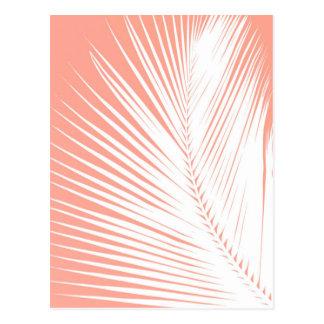 Palm leaf - white on coral pink postcard