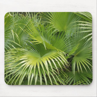 Palm Leaves Mouse Mat