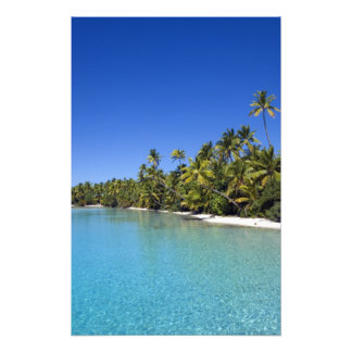 Palm lined beach Cook Islands 2 Art Photo