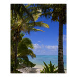 Palm lined beach Cook Islands 2 Posters