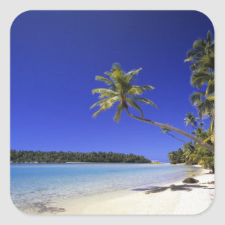 Palm lined beach Cook Islands 5 Square Sticker