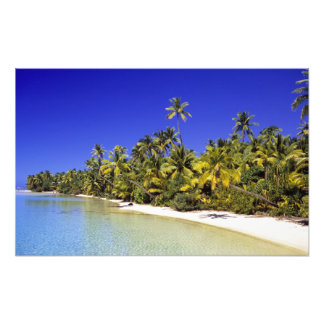 Palm lined beach Cook Islands 6 Photo Print