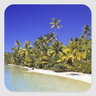 Palm lined beach Cook Islands 6 Square Sticker