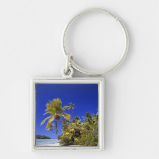 Palm lined beach Cook Islands 7 Key Ring