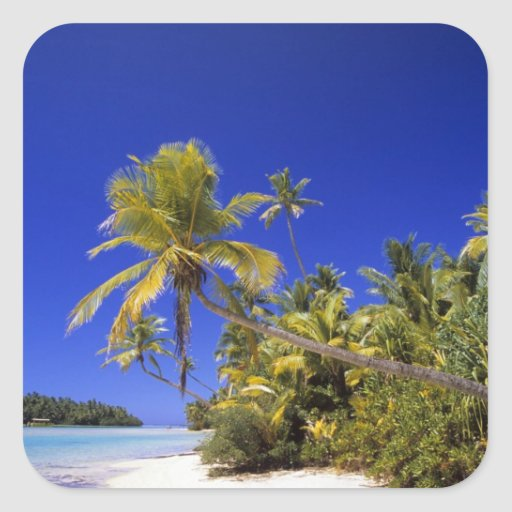 Palm lined beach Cook Islands 7 Square Stickers
