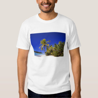 Palm lined beach Cook Islands 7 Tees