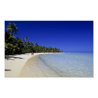 Palm lined beach Cook Islands 8 Poster
