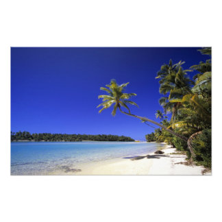 Palm lined beach Cook Islands Photographic Print