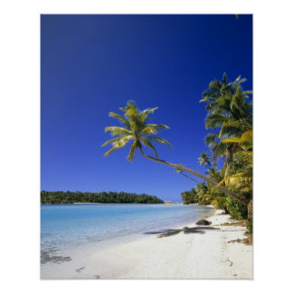 Palm lined beach Cook Islands Poster