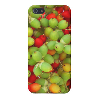 palm nuts green and red. iPhone 5/5S cover
