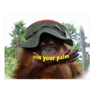 Palm Oil Orangutan Conservation Post Card