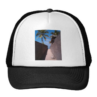 palm passage trucker hats