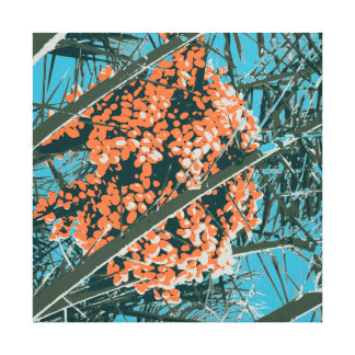 Palm Springs 6 Color Palm Berries 6A Stretched Canvas Prints