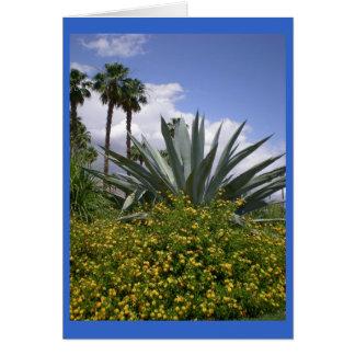 Palm Springs Photo Greeting Card