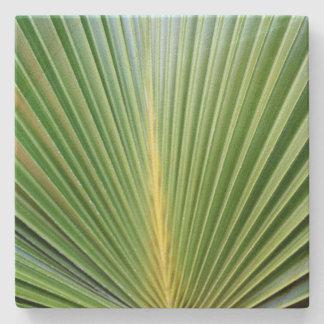 Palm Stone Coaster