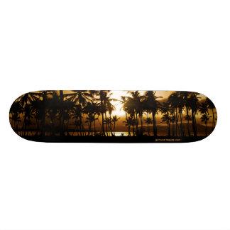 Palm Sunset Skateboard