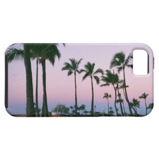 Palm Tree 2 Case For The iPhone 5