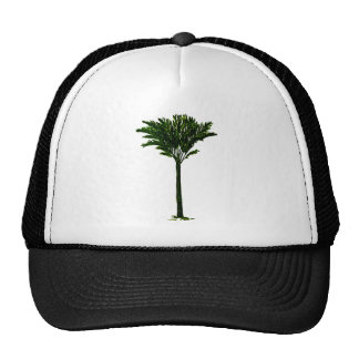 Palm Tree 2 The MUSEUM Zazzle Gifts Cap