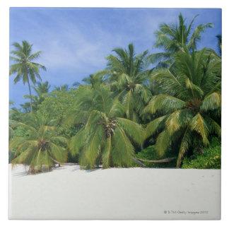 Palm Tree 3 Tile