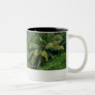 Palm Tree 3 Two-Tone Coffee Mug