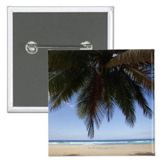 Palm tree along Caribbean Sea. 15 Cm Square Badge