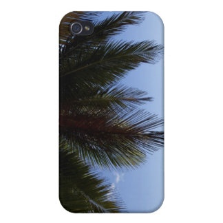 Palm tree along Caribbean Sea. iPhone 4/4S Cover