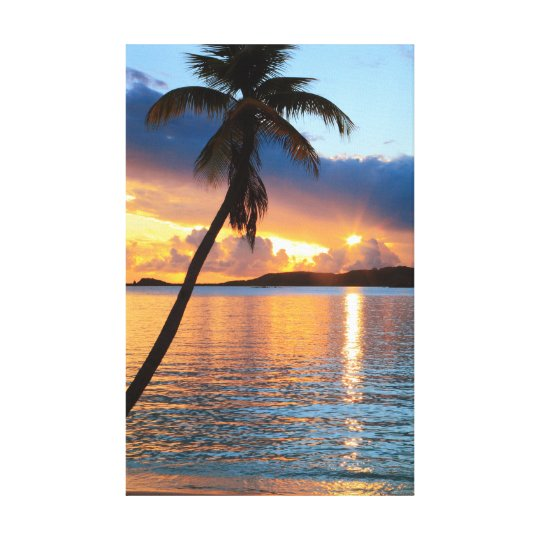 Palm Tree and Caribbean Sunset Sky, St. Thomas Canvas Print