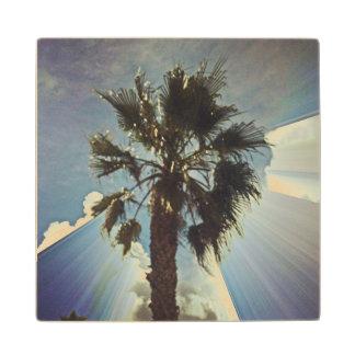 Palm tree and the sky Wood Coaster
