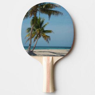 Palm tree and white sand beach