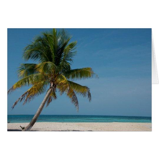 Palm tree and white sand beach 2 card