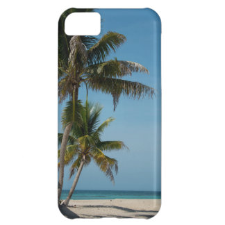 Palm tree and white sand beach iPhone 5C case