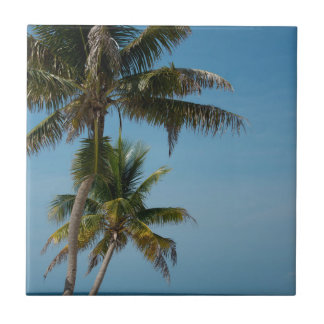 Palm tree and white sand beach tile