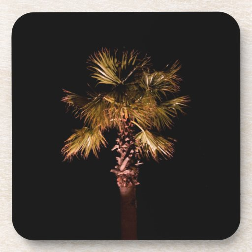 Palm tree at night beverage coaster