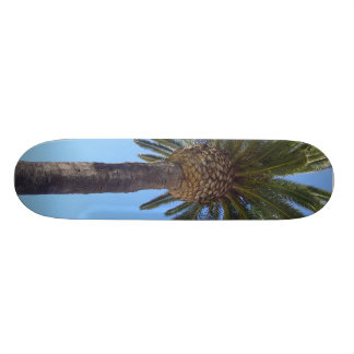 Palm Tree at San Diego, CA 21.6 Cm Skateboard Deck