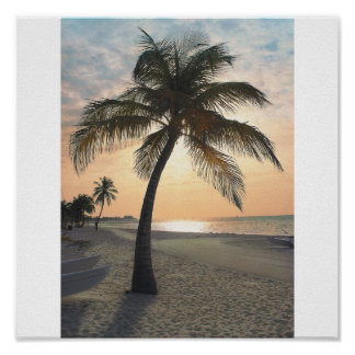 Palm Tree at Sunset Print