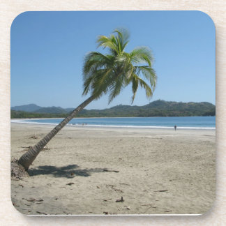 Palm Tree at the Beach Beverage Coasters