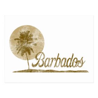 Palm Tree Barbados Postcard