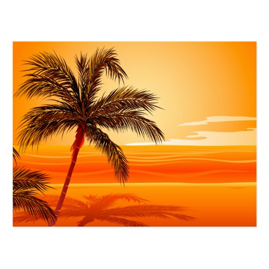Palm Tree Beach Sunset Postcard
