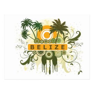 Palm Tree Belize Postcard