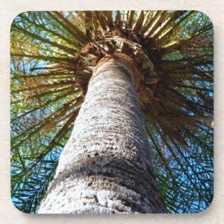 Palm Tree Beverage Coasters