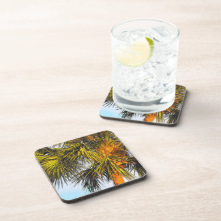 Palm Tree Branches, Afternoon Sun Beverage Coaster