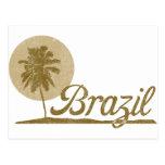 Palm Tree Brazil Postcard