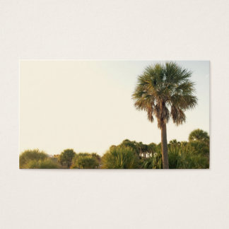 Palm Tree Business Cards