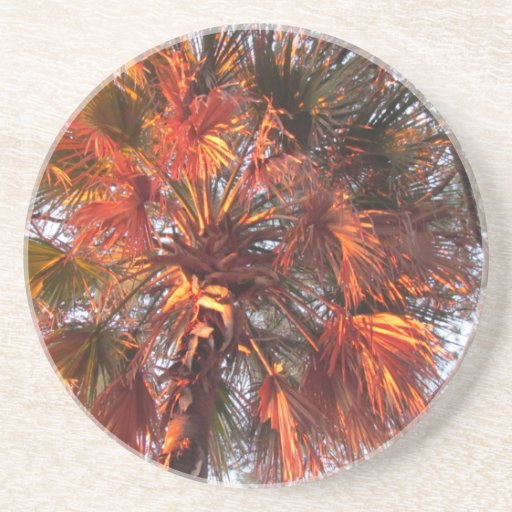 Palm Tree Drink Coasters