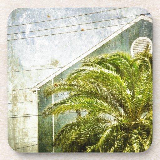 Palm Tree :) Coasters